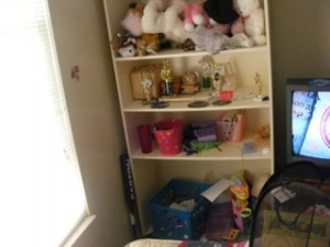 This is one of the two shelves in The Baby Girl's room, just a hot mess.